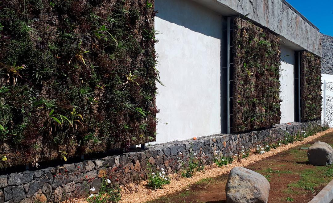 Confection de façades végétalisées